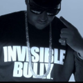 Invisible Bully Logo
