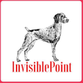 InvisiblePoint Logo