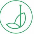 Jarved India Logo