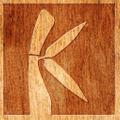 Kahoy Kollection Logo