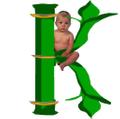 Kinderel Canada Logo