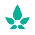 Kono Naturals USA Logo