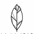La La Leaf Logo