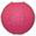 lanternshop.com.au Australia Logo