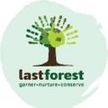 lastforest.in Logo