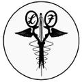 lauraflook.com Logo