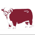 Lazy J Ranch Wear Logo