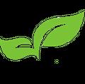 lets go natureal Logo
