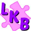 Lil Kink Boutique Logo