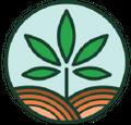 Lily Hill Cbd Logo