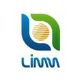 Limm Logo