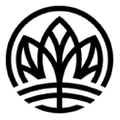 Link Nutrition logo
