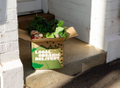 Local Organic Delivery Logo