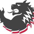 Lok Grips Logo