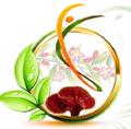 Longevity Power logo