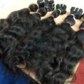 Lucky Hairs logo