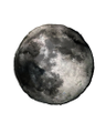 Lunar and Kite Logo