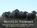 MARCELLI FORMAGGI Logo