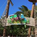 Margaritaville Caribbean Shop Logo