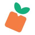 Mashblox Logo