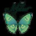 Matea Designs Australia Logo