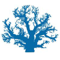 Maui Divers Logo