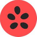 MAURO Seed Co. Logo