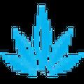Maxcbd Wellness logo