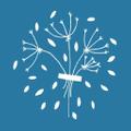 Meadow Blu logo