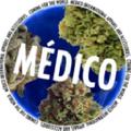 Medico USA Logo