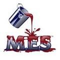 MES PAINT Logo