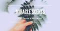 Miracle Scents Australia Logo