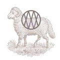 Modern Wool Logo