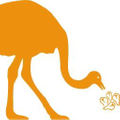 Moncah.Best Logo
