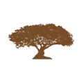 Monkeypod Jam Logo