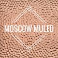 Moscow Muled Logo
