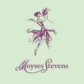 Moyses Stevens UK Logo