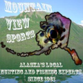 Mountain View Sports Logo