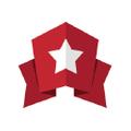 MVP Visuals Logo