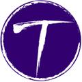 MyTeamBling.com USA Logo