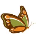 My Web Yard Sale Logo