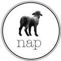 Nap Baby Logo