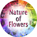 Nature Of Flowers Logo