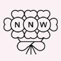 Nearly Newlywed USA Logo