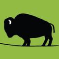 NebraskaBison.com Logo