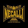Necalli Boxing USA Logo