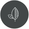 Nectar & Green Logo