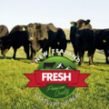 New Zealand Fresh Logo