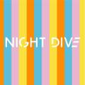 NIGHT DIVE logo