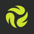 No Dinx Volleyball logo
